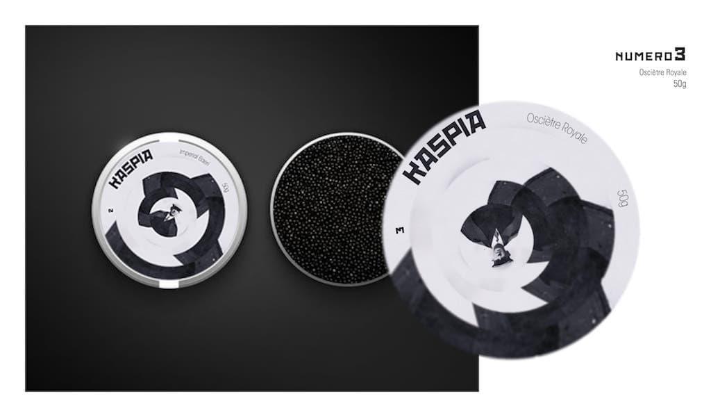 graphiste bordeaux design kaspia création logo charte graphique illustration